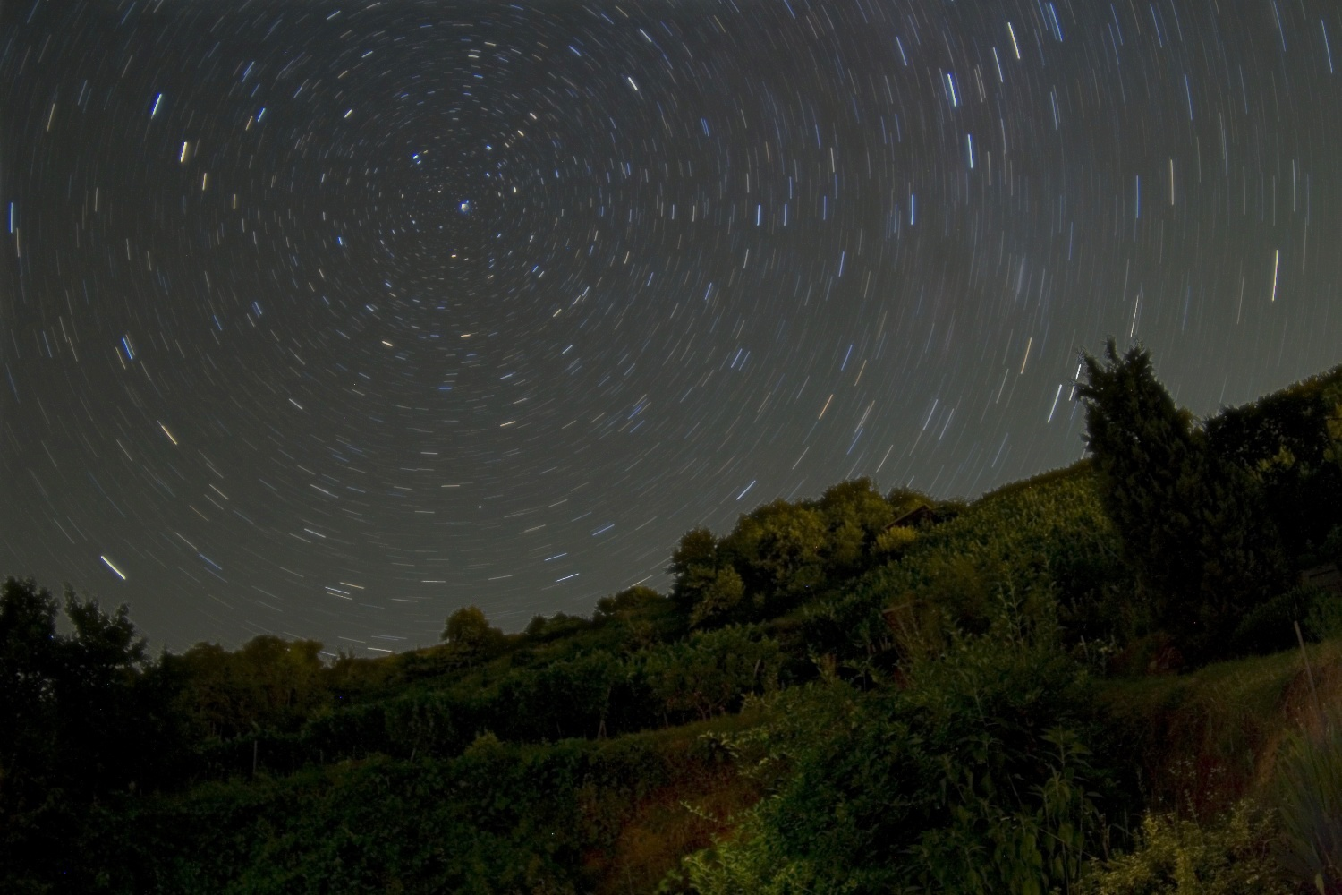 Startrails over Wachau vineyards